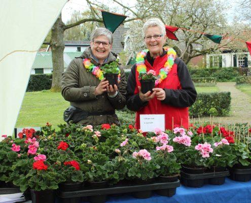 Hellendoorn Harmonie bloemenmarkt 2016